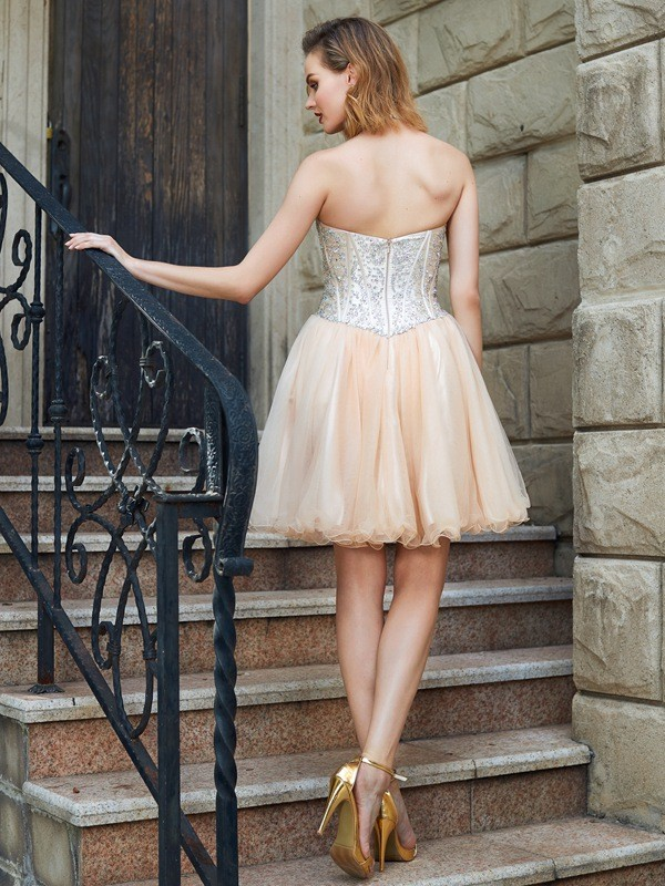 A-Line/Princess Halter Net Short Dress